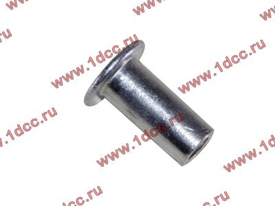 Заклепка алюминиевая 10х24 H2/H3 HOWO (ХОВО) 189000340068 AL фото 1 Хабаровск