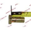 Болт пустотелый М12х1,25 (штуцер топливный) H HOWO (ХОВО) 90003962607 фото 2 Хабаровск