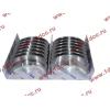 Вкладыши коренные стандарт +0.00 (14шт) H2/H3 HOWO (ХОВО) VG1500010046 фото 3 Хабаровск