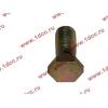 Болт пустотелый М12х1,25 (штуцер топливный) H HOWO (ХОВО) 90003962607 фото 3 Хабаровск
